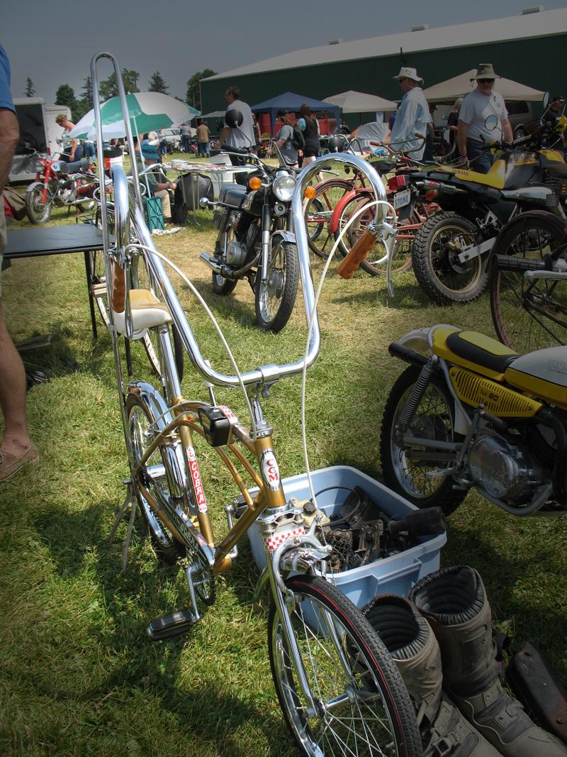 bike - cobra
