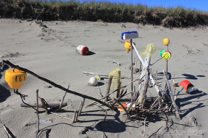 beach-buoys